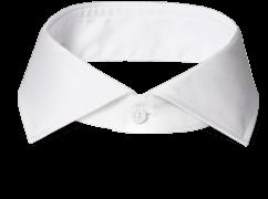 An INDOCHINO cutaway collar.