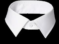 An INDOCHINO medium point collar.