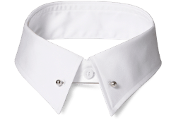 An INDOCHINO pinned collar.