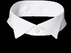 An INDOCHINO tuxedo collar.